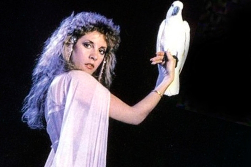 The Magical Delights of Stevie Nicks