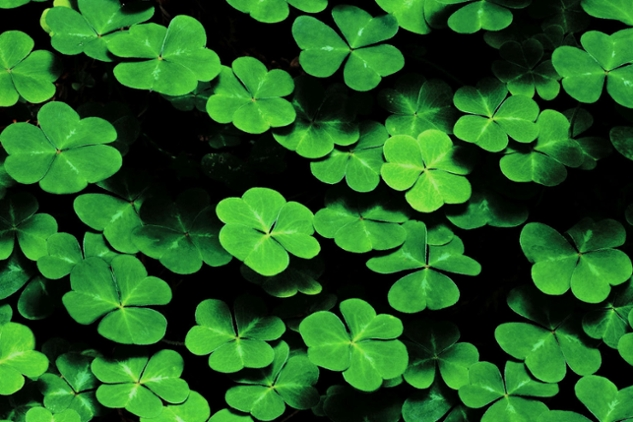 Songs for St. Patrick's Day